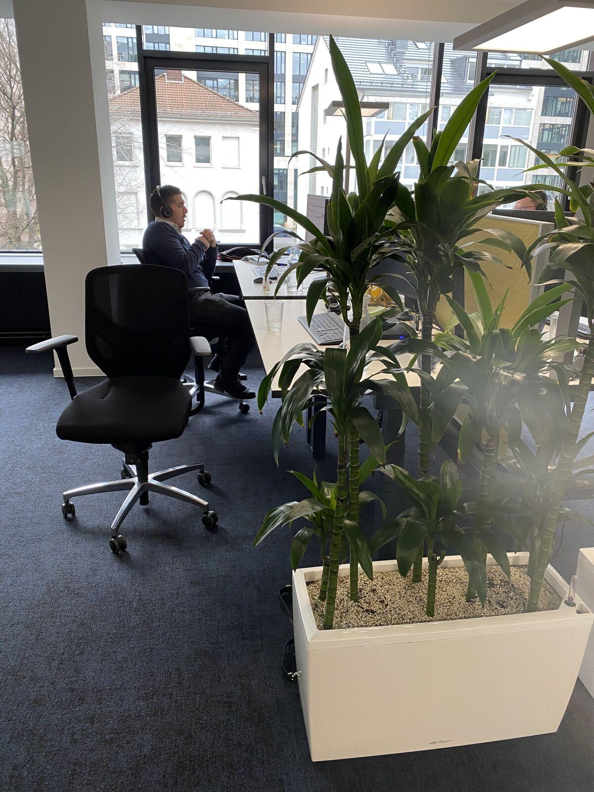 Trainee (m/w/d) im Produktmanagement HR Software in Freiburg - Job Freiburg im Breisgau - Stellenangebote bei HRworks